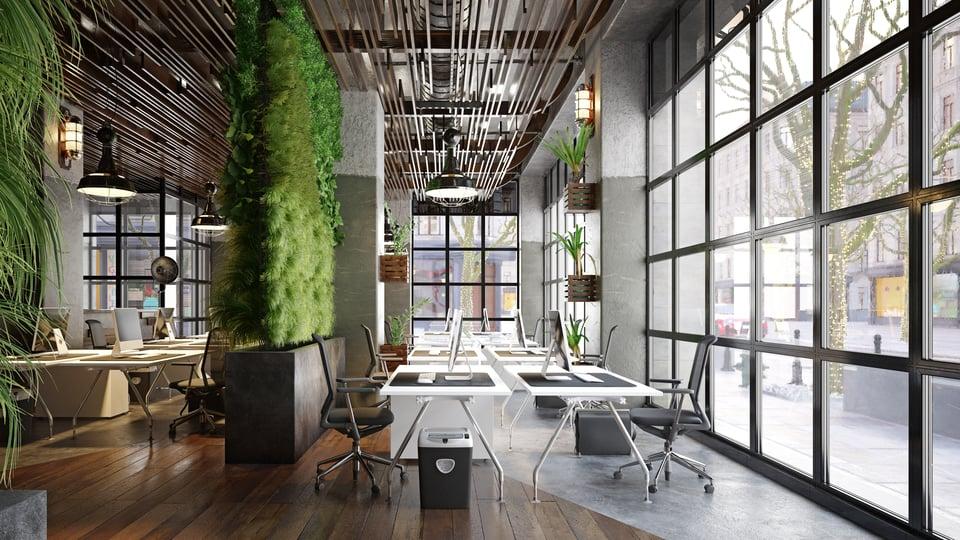 modern-office-design-biophilia