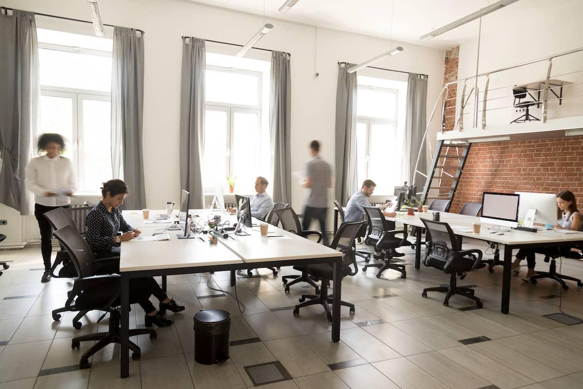clan-culture-open-office